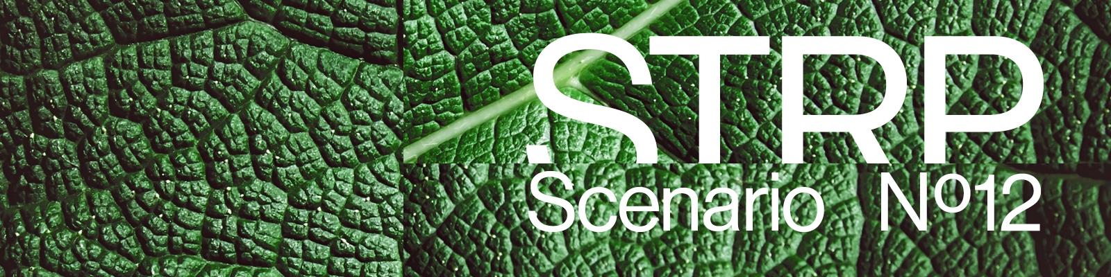 STRP 2021 Social Li Event Scenario12 1600x400