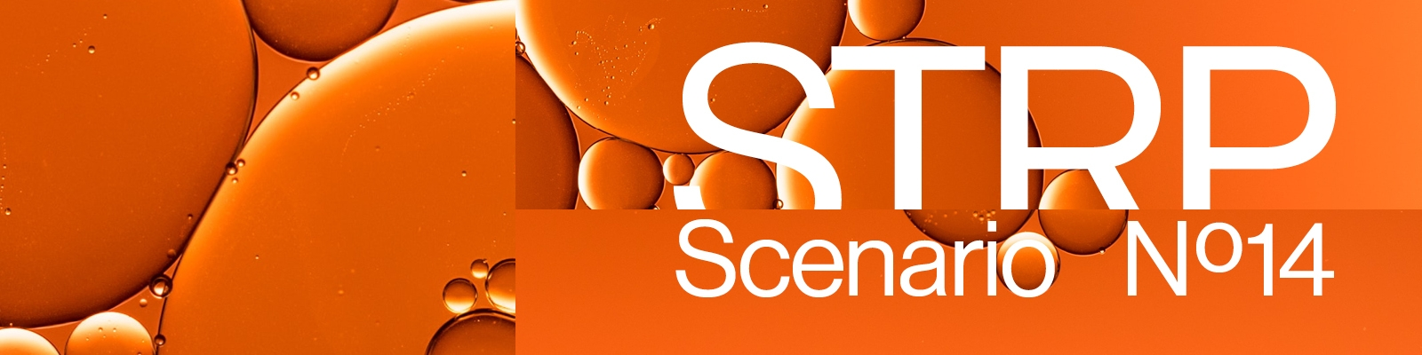 STRP 2021 Social Li Event Scenario14 1600x400